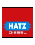 Hatz Generatoren | Hatz Aggregaten